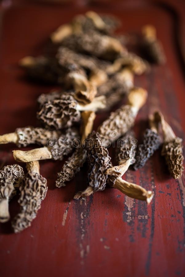 Dried morels on a red wooden board stock photos