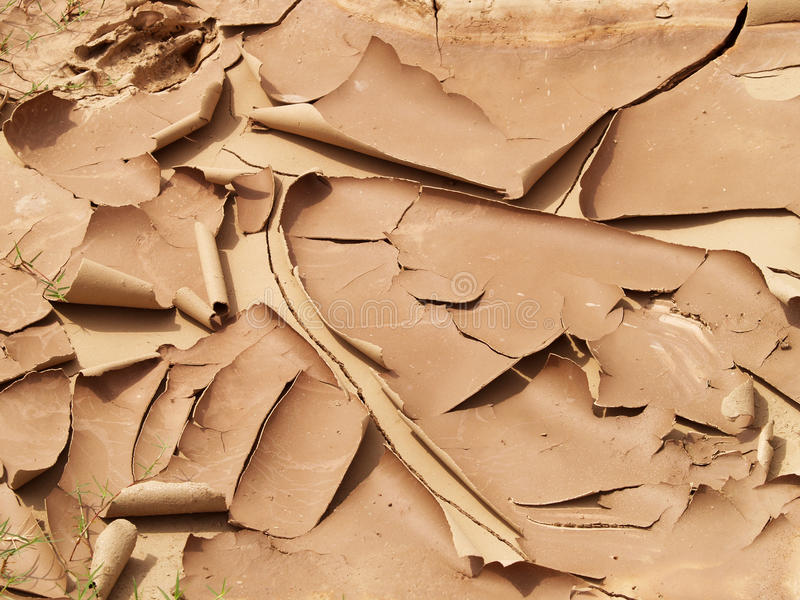 Dried Mud Stock Photography