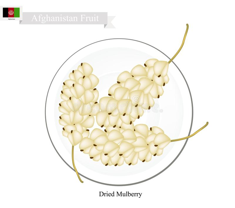 Dried Mulberry, A Popular Fruit in Afghanistan. Afghanistan Fruit, Dried Mulberry. One of The Most Popular Fruits of Afghanistan vector illustration