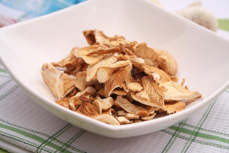Dried mushrooms in a bowl royalty free stock images