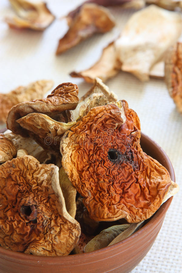 Dried mushrooms in clay pot royalty free stock photo