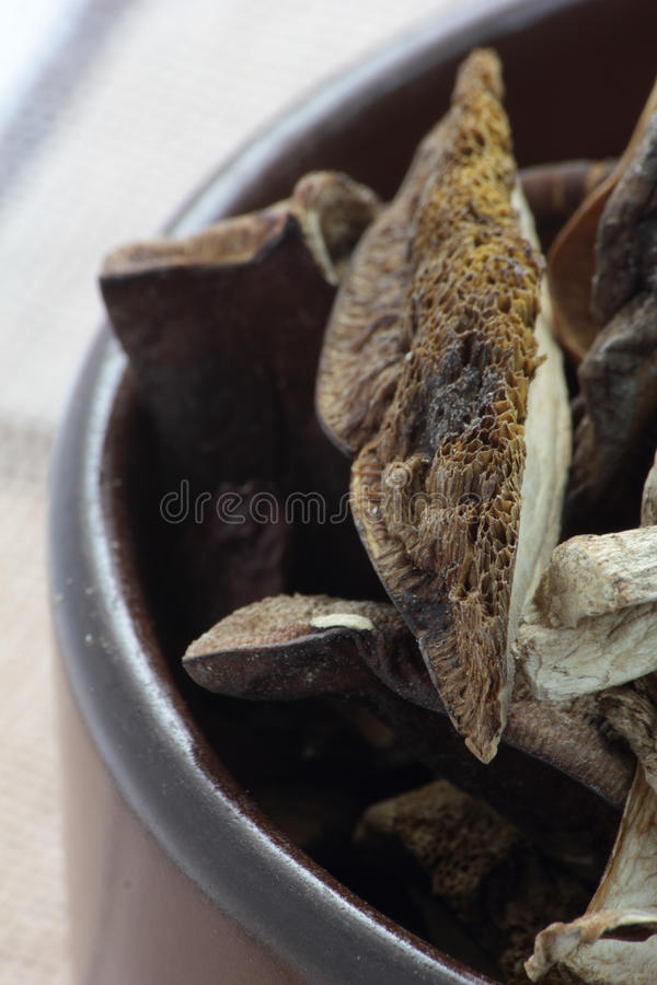 Dried mushrooms. royalty free stock photography