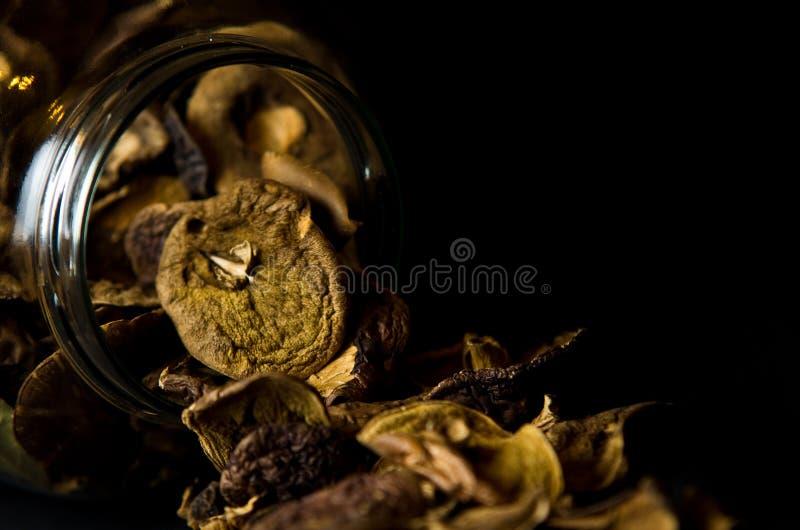 Download Dried Mushrooms in Jar stock image. Image of glass, ingredient - 29329585