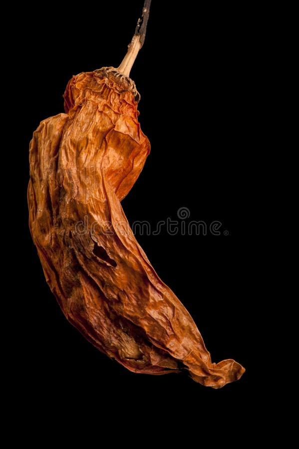 Dried chilli against black background royalty free stock image