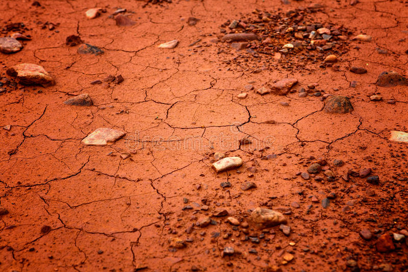 Dried out soil texture royalty free stock images