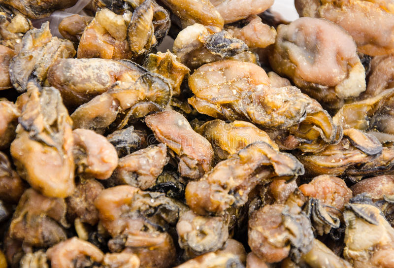 Dried oyster stock images