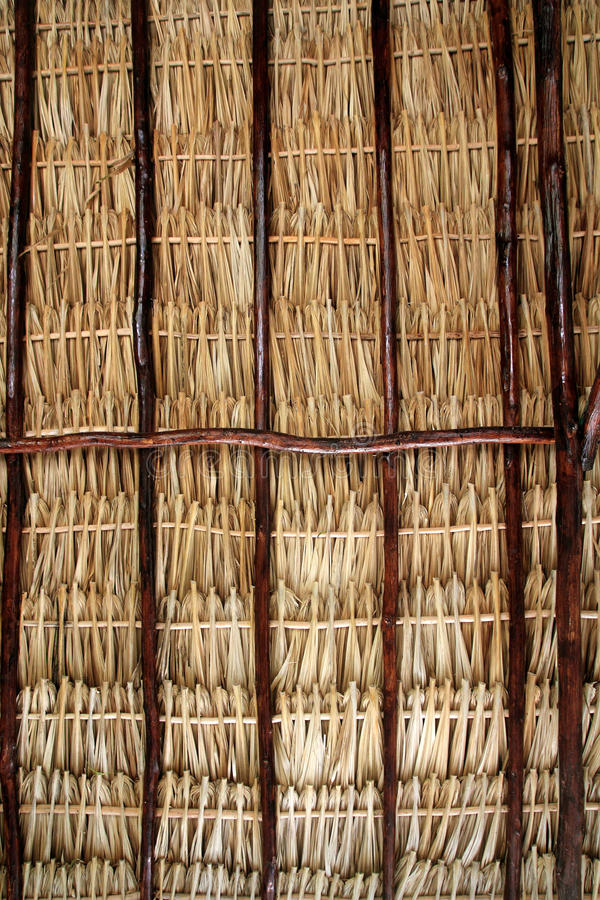 Download Dried Palm Tree Leaves Palapa Roof And Beams Stock Photo - Image: 20777776