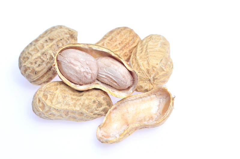 Download Dried peanuts stock photo. Image of seed, peanut, dried - 25369030