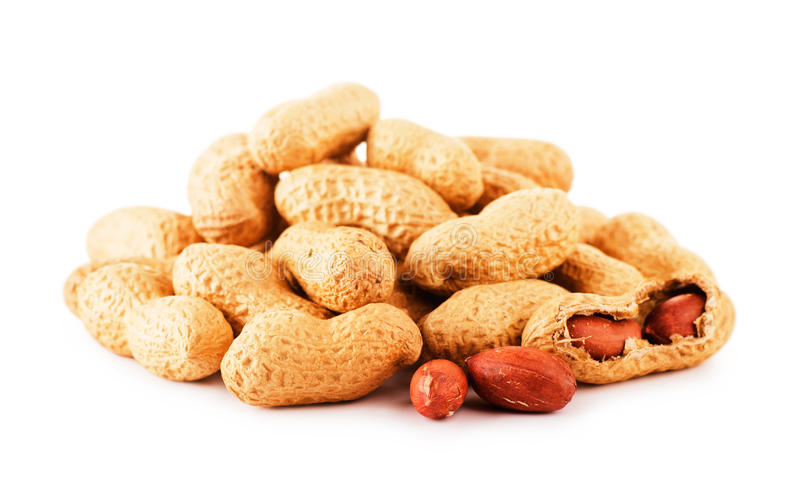 Dried peanuts stock image