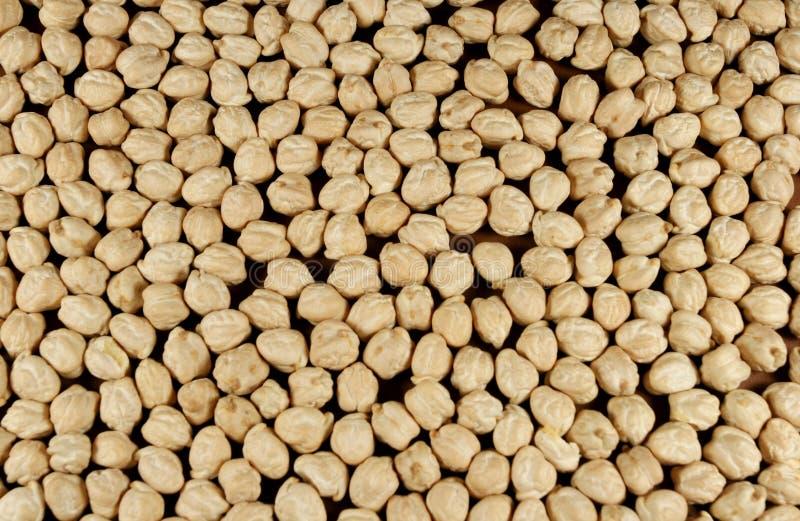 Dried peas royalty free stock photos
