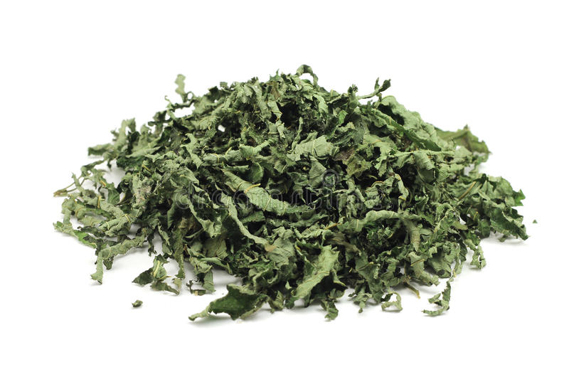 Dried peppermint leaves. On a white background stock images