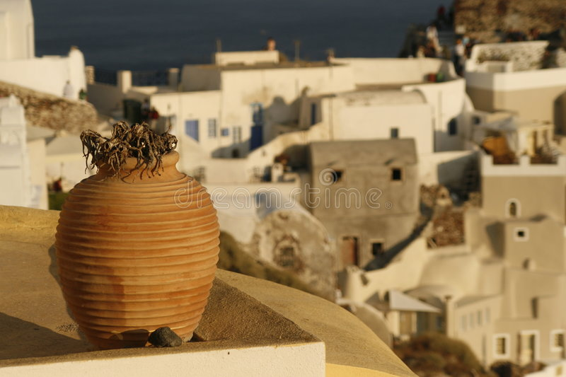 Dried plant in pot on balcony royalty free stock image
