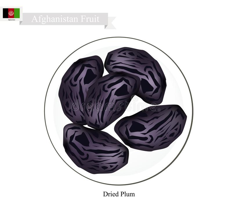 Dried Plum, A Popular Fruit in Afghanistan. Afghanistan Fruit, Dried Plum. One of The Most Popular Fruits of Afghanistan vector illustration