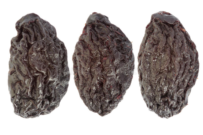 Download Dried plums stock photo. Image of dried, ingredient, group - 21674548