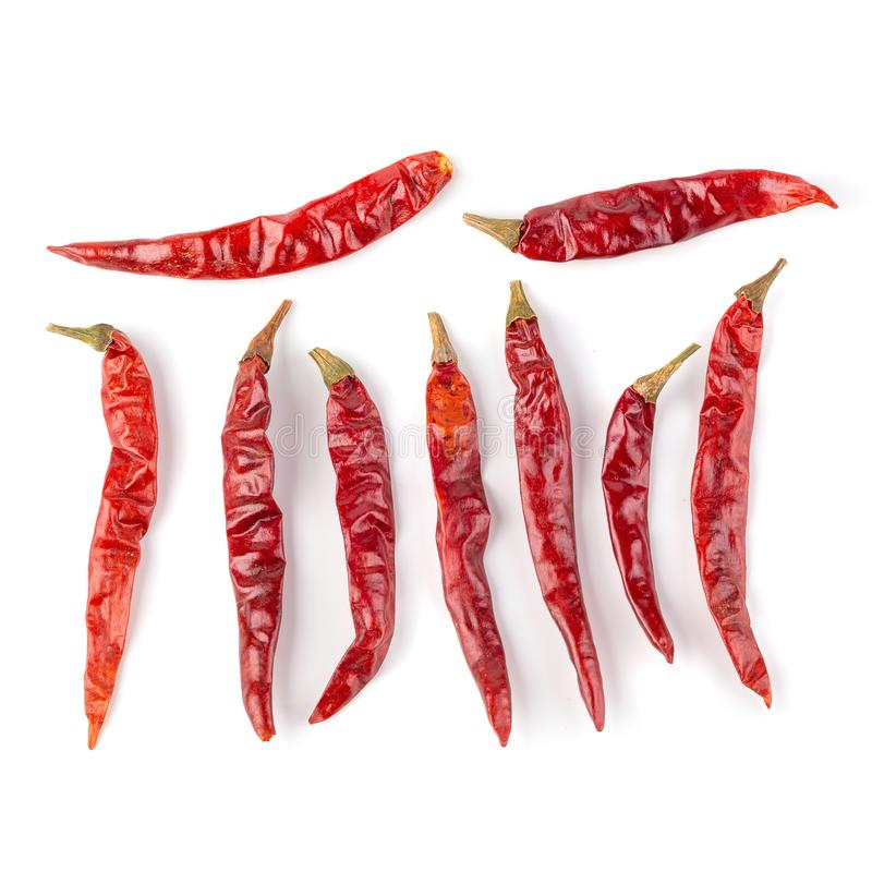 Dried red hot chilli pepper isolated on white background royalty free stock photo