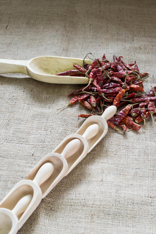 Dried red hot chilly peppers stock photography