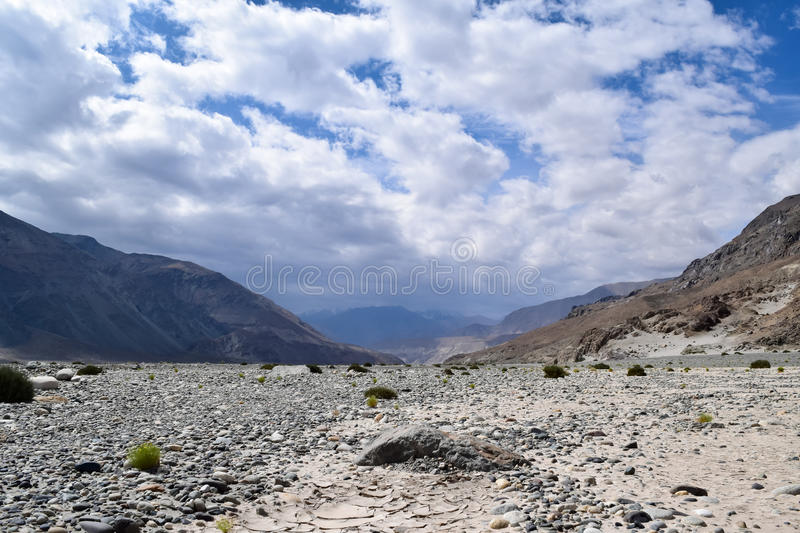 Dried river bed with river stones in a river of leh ladakh. River stones and small shrubs in beautiful landscape of ladakh mountain region in Jammu Kashmir India royalty free stock image
