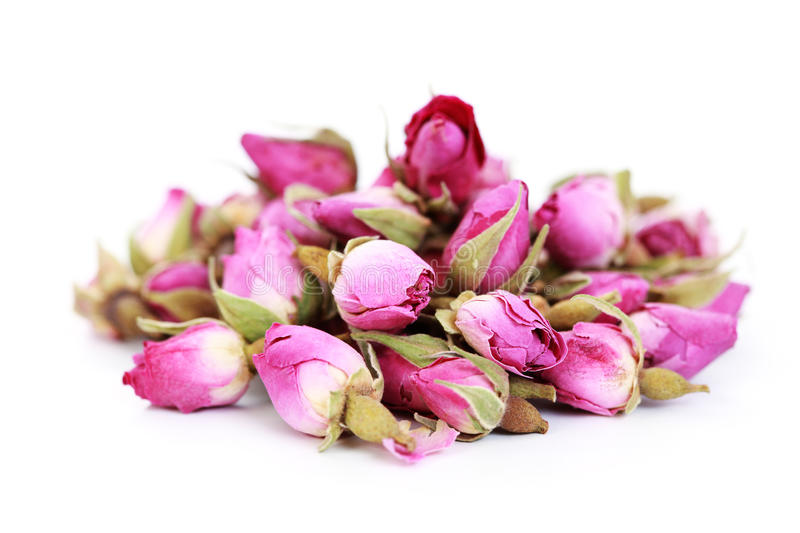 Dried roses royalty free stock photography