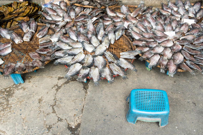 Dried salted damsel fish royalty free stock photos