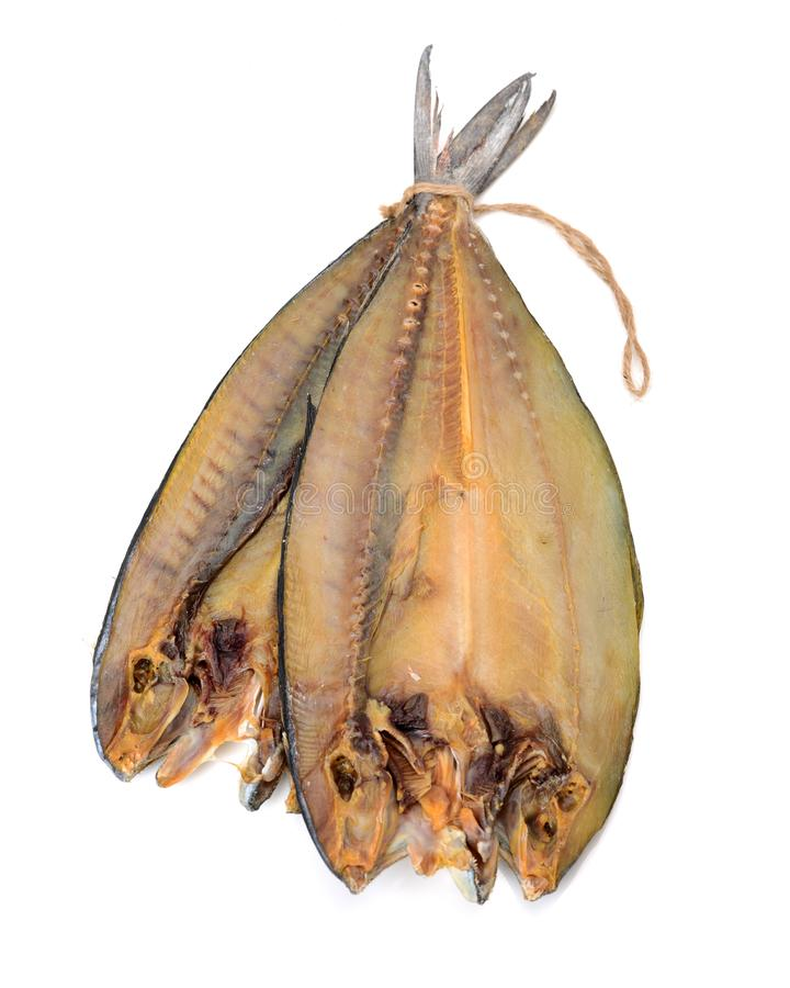 Dried salted fish from Anyer Beach, Serang, Banten, Indonesia. On white background stock photography