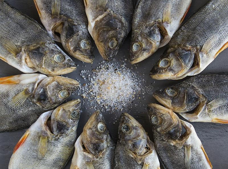 Dried salted fish - stock fish. Dried salted fish in the circle -  stock fish stock photo