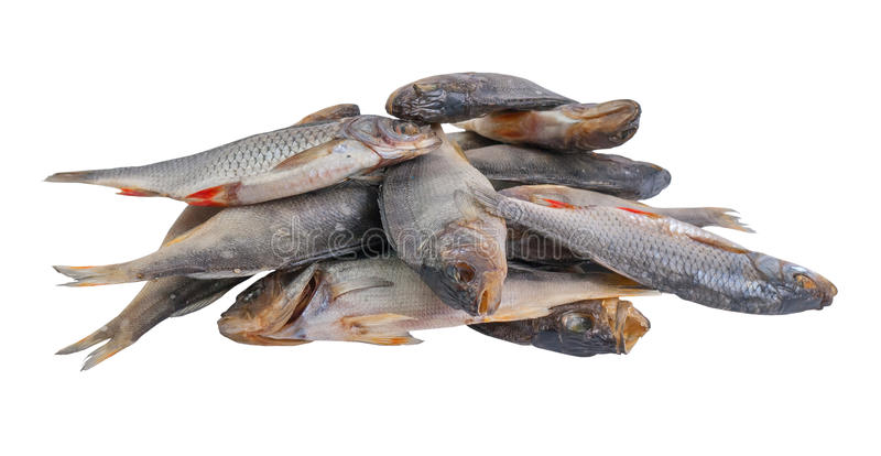 Download Dried salty fishes stock image. Image of eating, industry - 25804983