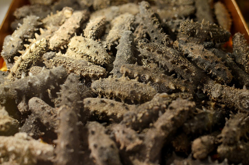 Dried sea cucumber. Salted sea cucumber from China royalty free stock images
