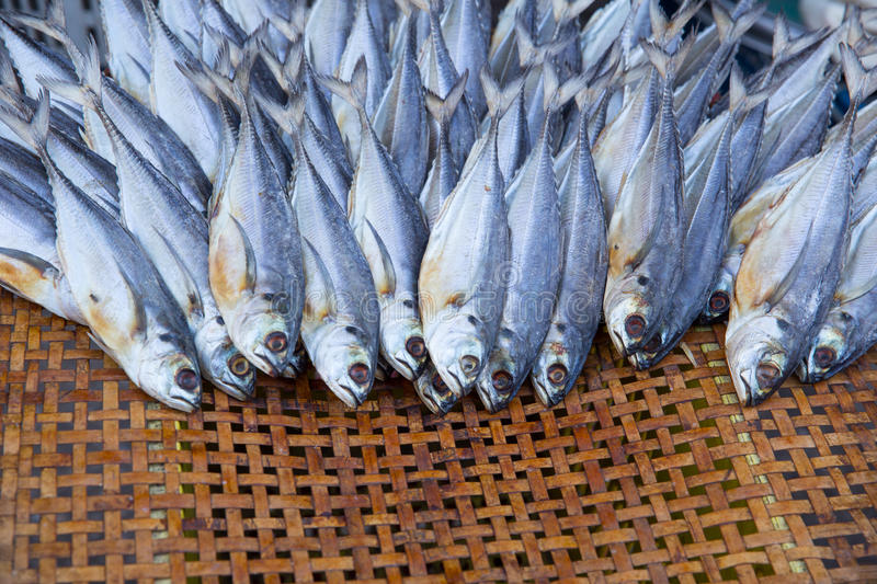 Sunny dry fish for food preservation. stock image
