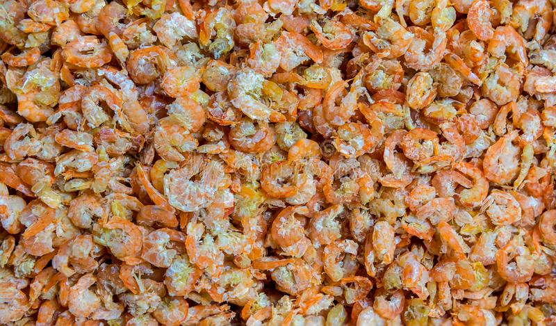 Dried shrimp. dried shrimp prepared for cooking in thailand market. Dried shrimp or dried salted prawn background,. Seafood background. piled of shrimp sell at royalty free stock image