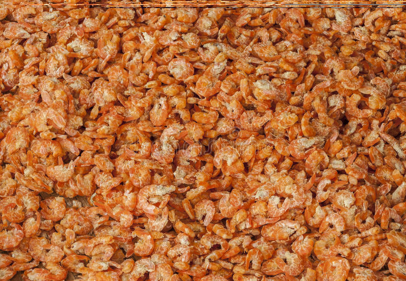 Dried shrimps royalty free stock images