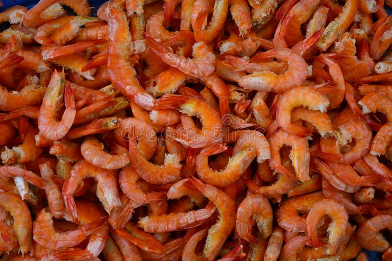 Dried shrimps. Tasty bunch of red prawns. Delicious background of gourmet seafood. A closeup of hundreds of tasty and fresh prawns. Bunch of orange and pink royalty free stock photos