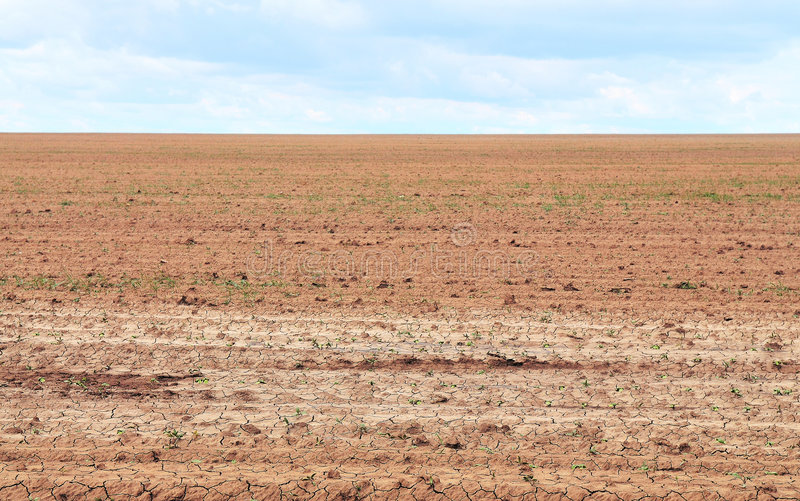 Dried soil royalty free stock photography