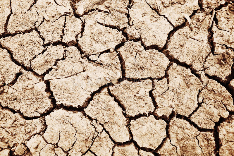 Dried soil detail royalty free stock photography