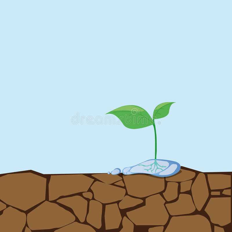 Dried soil and seedlings.Sapling growing from arid land. Plant grow on crack dirt..Cracked clay. Water faucet. Go green. Save world. vector illustration stock illustration