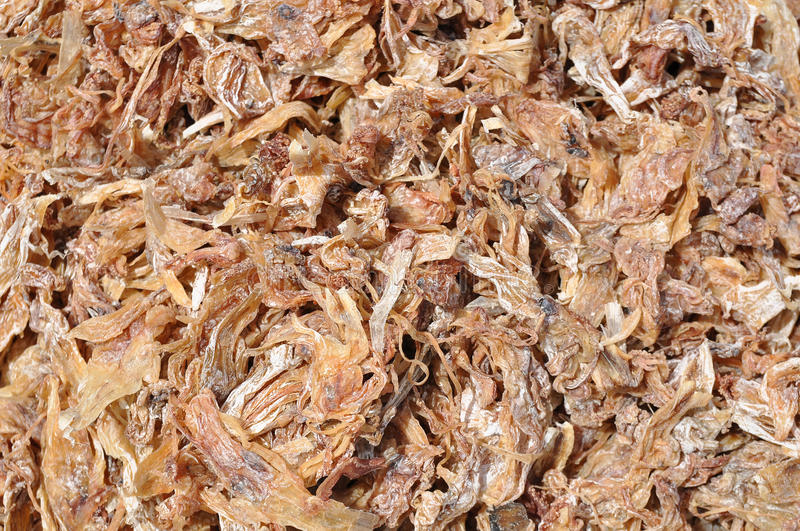 Download Dried squid stock photo. Image of heat, eating, healthy - 25785672