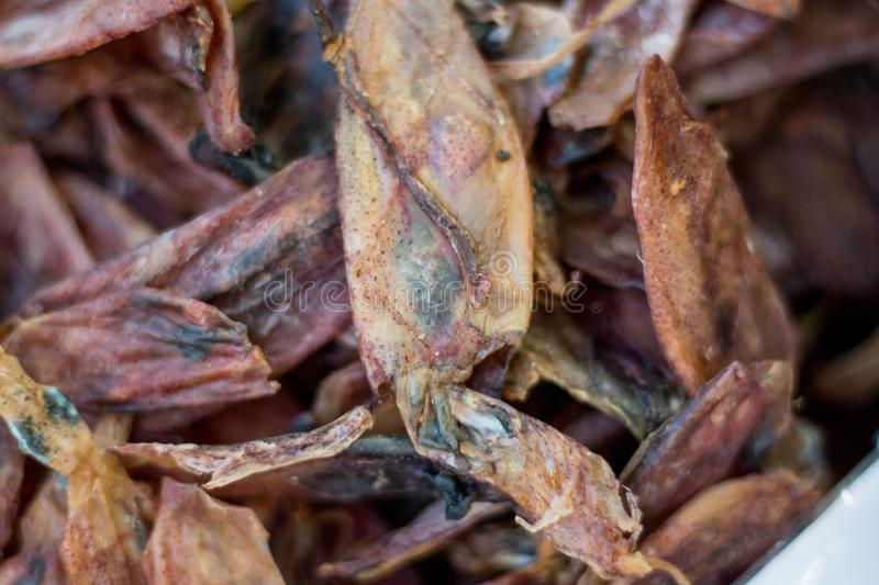Dried squid seafood stock photography