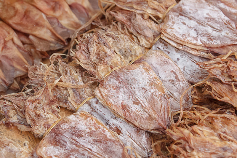 Dried Squid,squids drying in the sun stock image