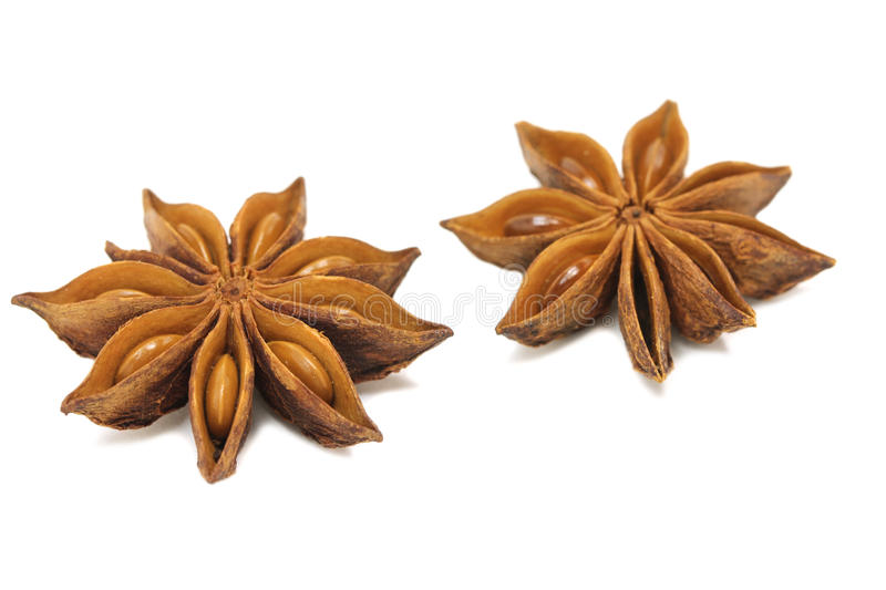 Dried star anise flowers on a white background stock image