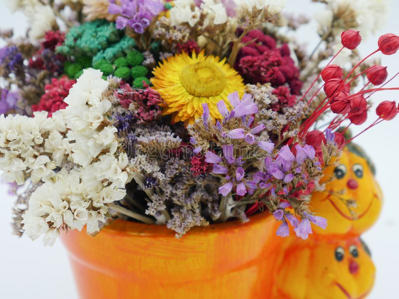 Dried straw flower positioned in a ceramic pot stock images