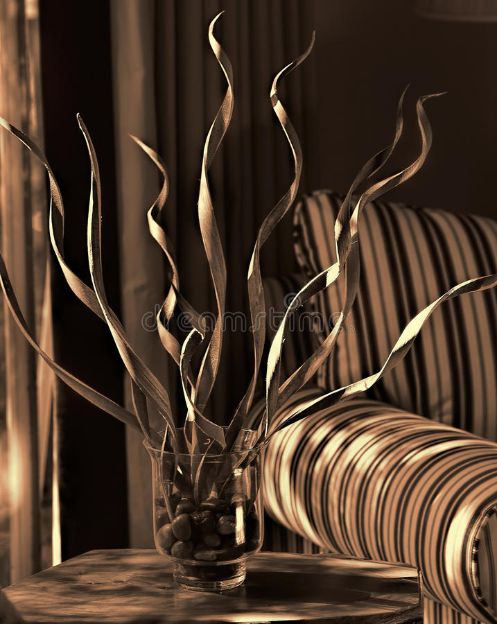 Dried Sumbawa Grasses--Sepia and Gold royalty free stock images