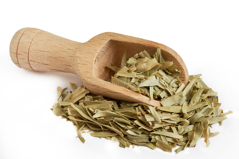 Dried tarragon leaves. With wooden scoop isolated on white background royalty free stock photos