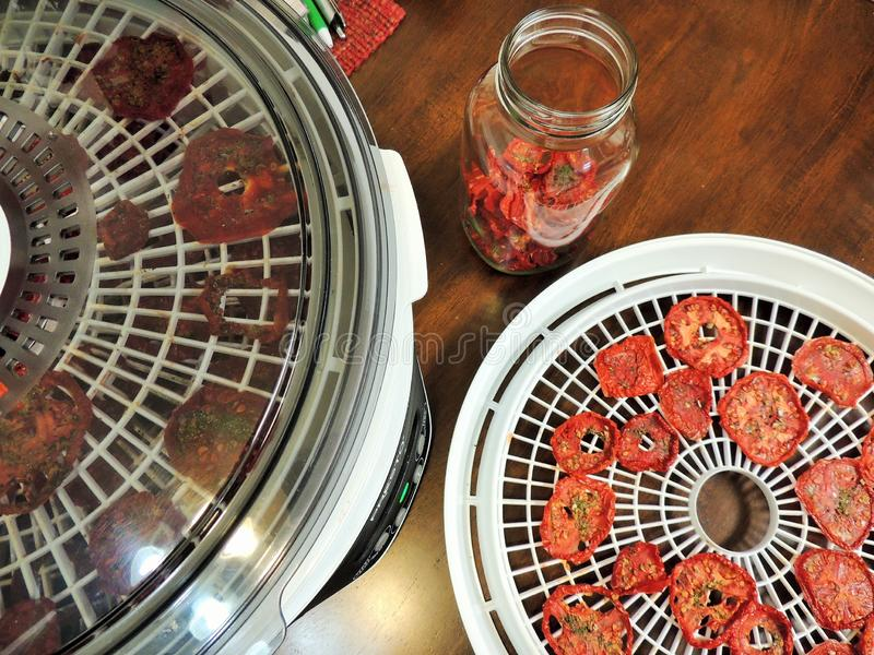 Dried Tomatoes, Dehyrdator And Conditioning Jar Free Public Domain Cc0 Image