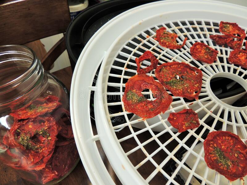 Dried tomatoes need to be conditioned stock image