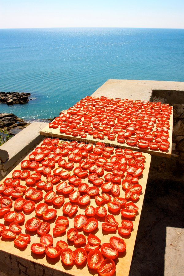 Dried tomatoes over the sea stock photography