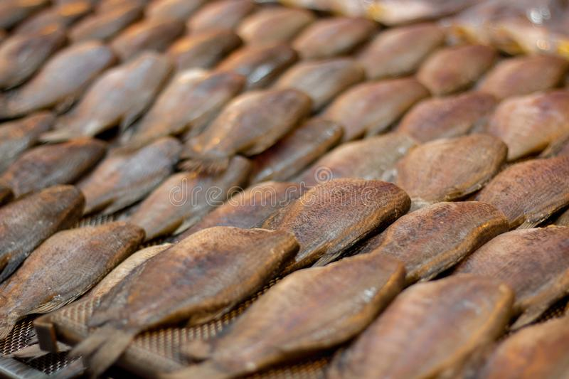 Dried Trichogaster pectoralis fish , Sun dried fish. In market royalty free stock photo