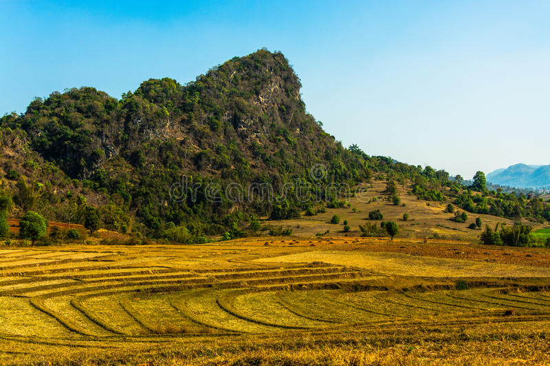 Dried up rice fields in front of rock formation stock images