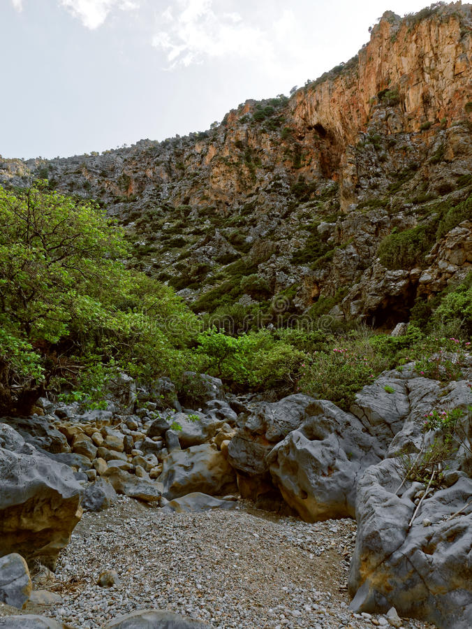 Dried up riverbed inside Aposelemi Gorge on Crete royalty free stock images