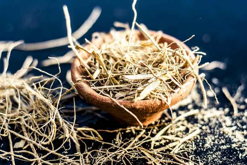 Close up of dried vetiver grass or khur or Chrysopogon zizanioides grass in a clay bowl o wooden surface. Dried vetiver grass or khus or Chrysopogon zizanioides royalty free stock image