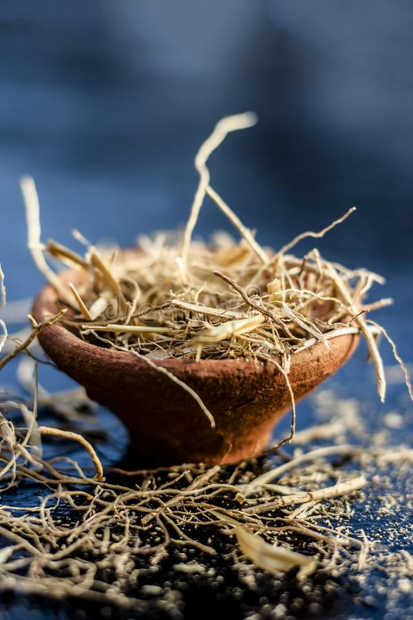 Close up of dried vetiver grass or khur or Chrysopogon zizanioides grass in a clay bowl o wooden surface. Dried vetiver grass or khus or Chrysopogon zizanioides royalty free stock photos