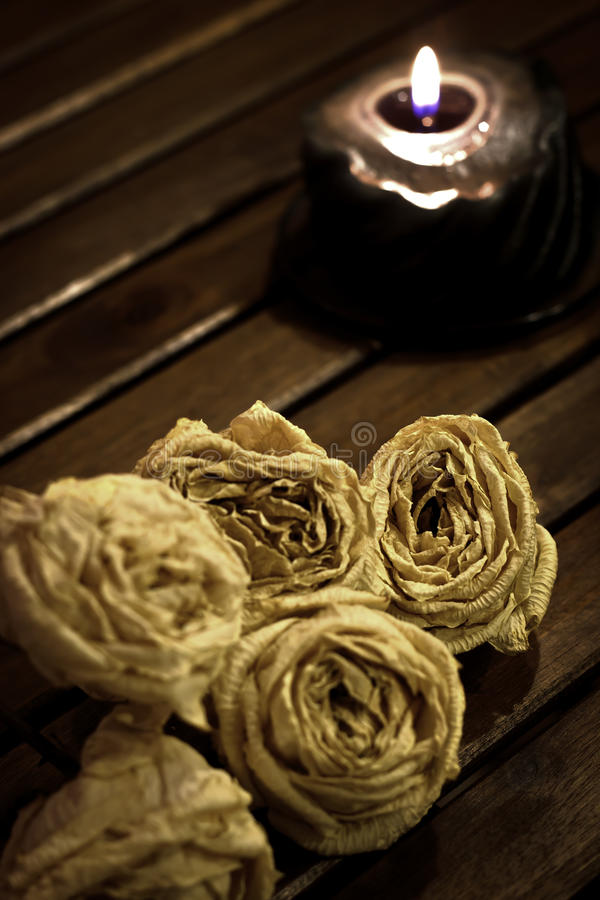 Download Dried white roses stock photo. Image of love, white, wood - 17860260